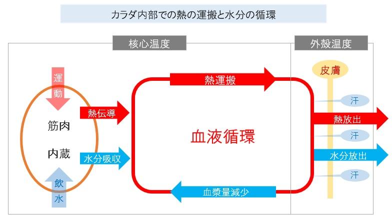 熱運搬と水分循環