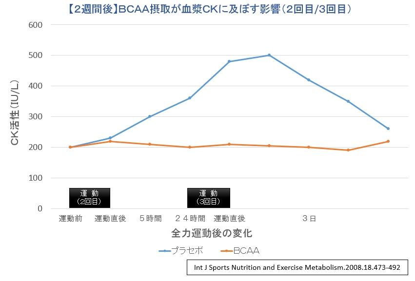 BCAA摂取実験②